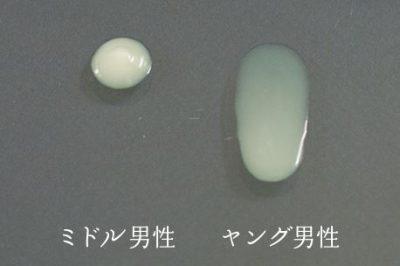 皮脂の比較